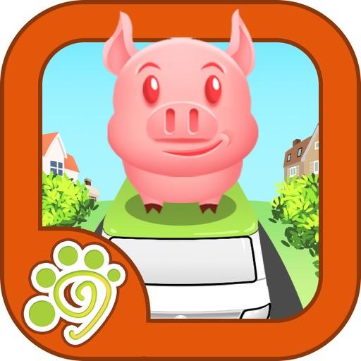 赫赫猪,晨晨猪,懒懒猪一样参加节目录制,受到全国猪猪的欢迎呢!