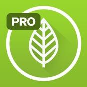 Garden Plate Pro - healthy vegetarian & gluten free diet recipes