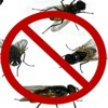 Ultrasound House Fly Repellent Super app for iPhone/iPad