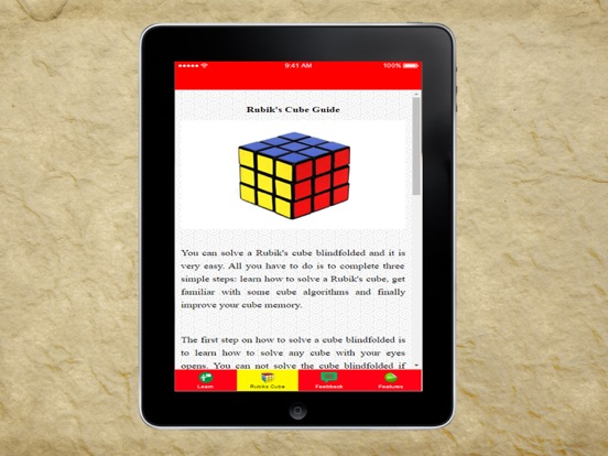 auditing ch15 solutions rubix cube cover