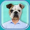 Animal Face Photo Booth – Funny Picture Studio