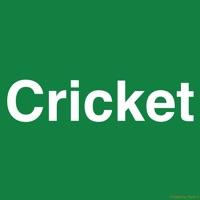 Cricket Darts Scoreboard