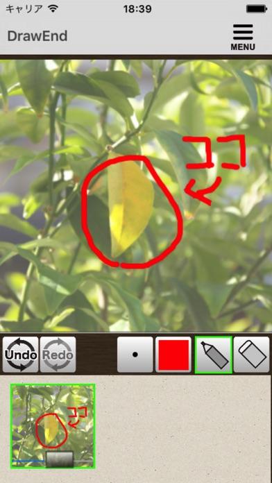 http://is5.mzstatic.com/image/thumb/Purple62/v4/76/02/d8/7602d84e-974e-e980-b579-0d65aa7b72a0/source/392x696bb.jpg