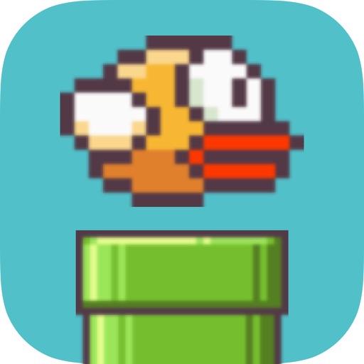 Forcy Birds iOS App