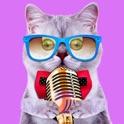 Drôles de voix Effets Changeur - Video Creator drôle Avec Changement Accent icon