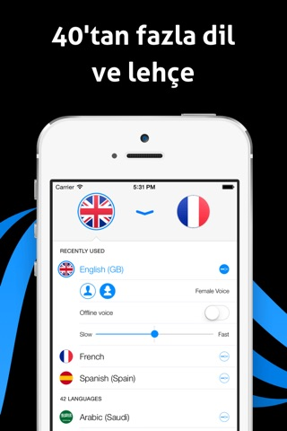 iTranslate Voice - Speak & Translate in Real Time screenshot 3