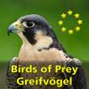 Greifvögel und Eulen Europas
