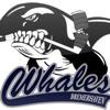 Bremerhaven Whales