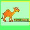Camel Slalom
