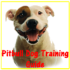 Pitbull Dog Training Guide HD