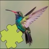 Hummingbirds Amazing Puzzles