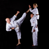 Self Learning Karate: Tutorial with Tips