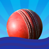 Cricket clicker - Cricket umpire's assistant