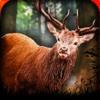 Safari Deer Hunter - 2016