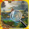 Hidden Objects Into The Forest