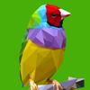 ColorKnows: Mejor libro de colorear adultos con repetición y terapia