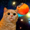 Hurma Cat for Watch - The first fully motion-based game for watch