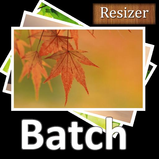 Acc Image Batch Resizer