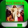NIV Bible.