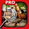 Hidden Object Animal Story Pro