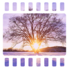 Photo Shape Collage Pro - Overlay & Frame Pics for Posts on Tagged