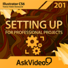 Professional Project Course For Illustrator CS6