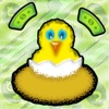 Chicks: Count Your Cash - Gold