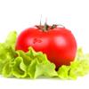 The Vegetables Encyclopedia