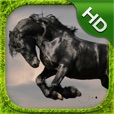 Horse Simulator - HD