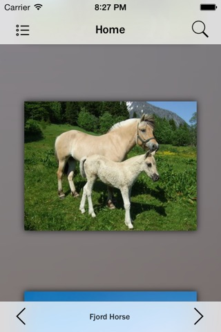Horse Breeds Collection Pro screenshot 4