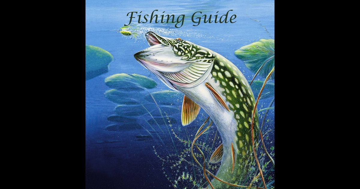 Fishing guide become fishing kings app store for How to become a fishing guide