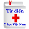 Từ điển y học Việt Nam