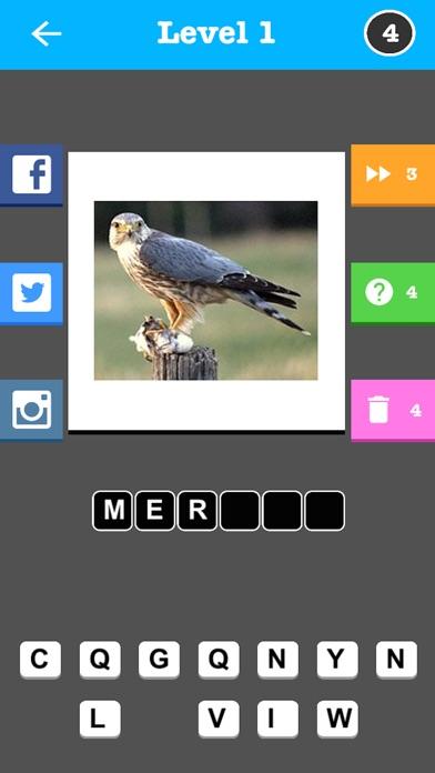 Птица Общая - Слово Викторина игрыСкриншоты 3
