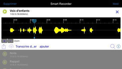 Capture d'écran de Smart Record Transcripteur5
