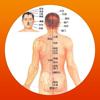 人体解剖艺术摄影图片推拿师HD 帮助失眠治愈颈椎你好睡眠管家趣医院