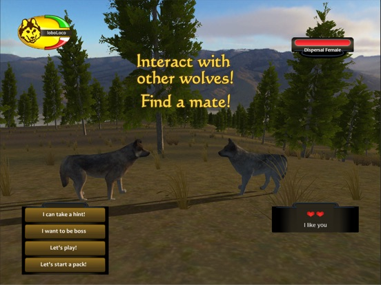 Wolfquest on the app store ipad screenshot 3 ccuart Choice Image