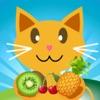 QCat - prescolare 7 in 1 gioco educativo per bambino e bambini: frutta (gratuito)