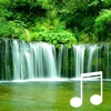 Water Sounds relaxation: Wilderness stream and healing sounds of flowing water