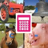 Farm Animal Sounds Calculator