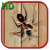 Ant Smasher Free - #1 ant tapping addicting Games