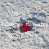 Palma de Mallorca Offline Map by hiMaps