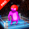 Lucha Mortal  Pro