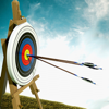 Archery World Champion : Shooter Challenge 3D