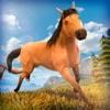 Horse Simulator 2017   My Little Racing Horses