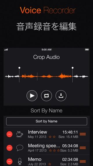 ボイスレコーダー - インタビュアーと学生のためのスマート音声記録ユーティリティ Screenshot