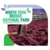 North York Moors National Park Tourism