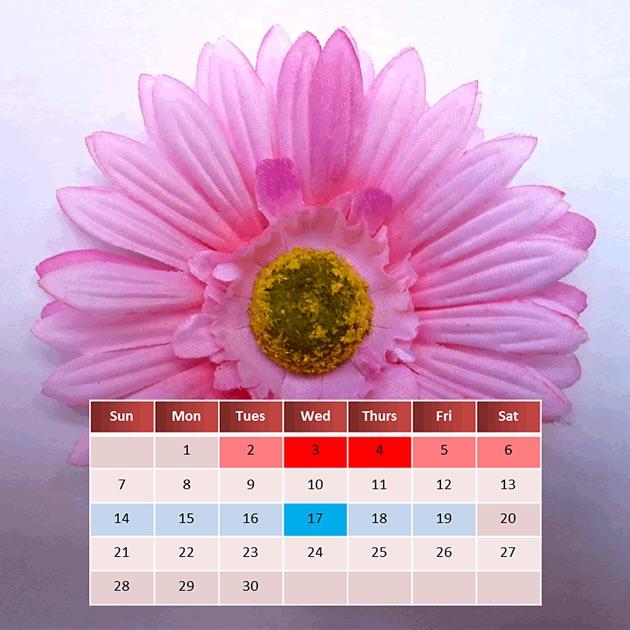 Фото календарь месячных