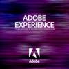 Adobe Experience 2016