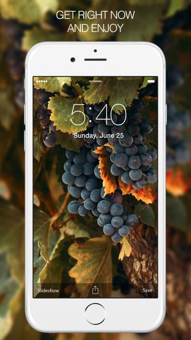 Fruit Wallpapers – Apple Wallpaper & Fruit Gallery Screenshot