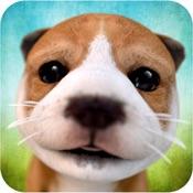 Dog Simulator 2015 hacken